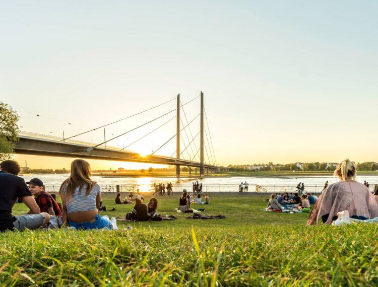 Rheinwiesen Düsseldorf
